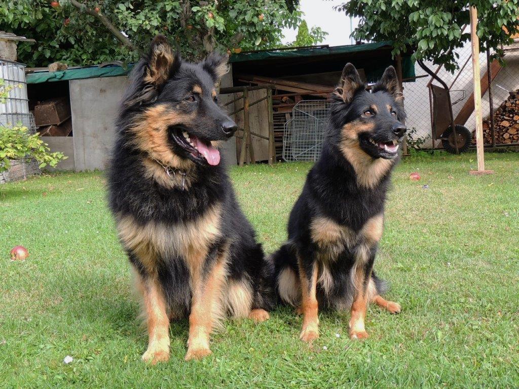 Carlos et Regina 2